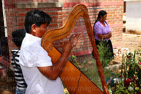 Peruvian man playing Andean harp next to grave for souls of the deceased, Todos Santos festival, Sipe Sipe, Cochabamba Department, Bolivia