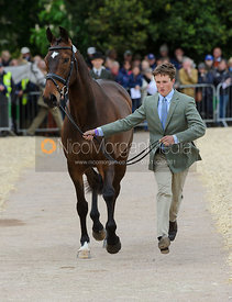 Tom McEwen and DIESEL - First Horse Inspection, Mitsubishi Motors Badminton Horse Trials 2014
