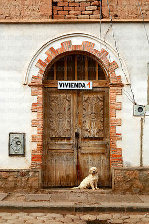 Dog sitting in front of old wooden door, Camargo, Chuquisaca Department, Bolivia