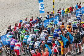 The Peloton on Mont Ventoux - Tour de France 2013