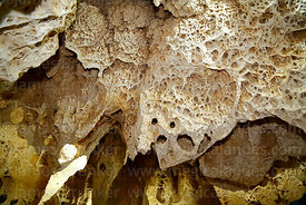 Fossilised algae and coral deposits in Gruta de las Galaxias cave near Salar de Uyuni, Aguaquiza, Nor Lipez Province, Potosí Department, Bolivia