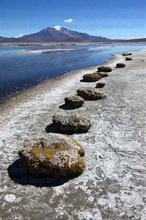 Strange seat like formations on shore of Salar de Surire at Polloquere , Region XV , Chile