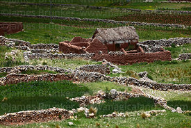Thatched adobe farmhouse, fields and stone walls near Acora, Puno Region, Peru