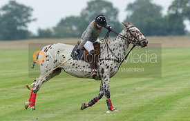 Little Bentley Polo Club tournament 29/9/13