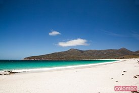 Wineglass bay beach Tasmania Australia