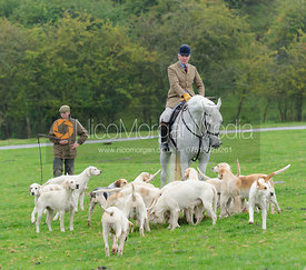 Andrew Osborrne MFH and Cottesmore hounds - The Cottesmore Hunt at Marefield 26/8