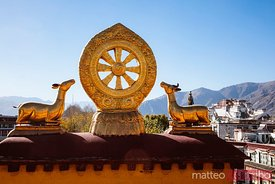 The golden wheel of Dharma, Jokang  Lhasa, Tibet