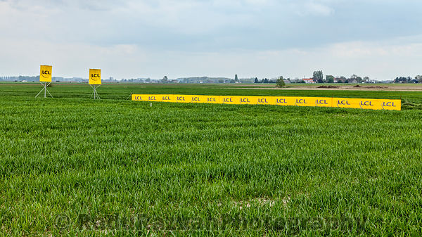 Banners in the Field