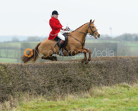Andrew Osborne jumping a hedge at Wilson's - The Cottesmore Hunt at Manor Farm