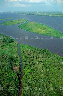 Amazon River with Islands Covered with Grassland Brazil