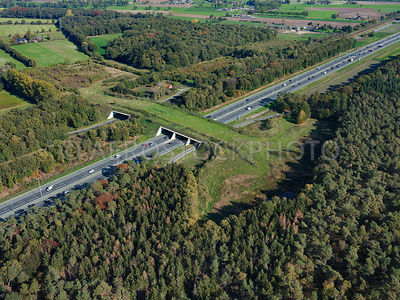 305332 | Ecoduct Mollebos is an ecopasssage or wildlife viaduct over the A12 near Austerlitz.