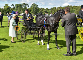 Her Majesty The Queen - British Driving Society Summer Show, Guards Polo Club, Smiths Lawn
