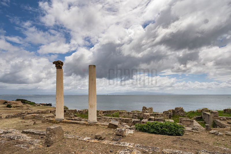 Doric Columns on the Site of a Temple at Tharros