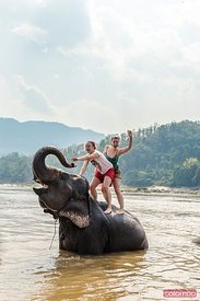 Tourists experiencing bathing with elephant, Laos