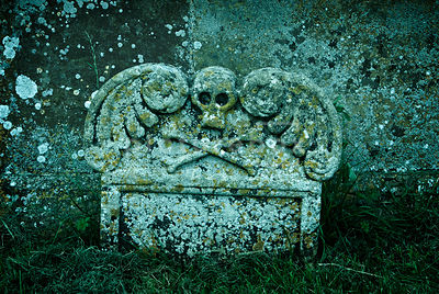 An atmospheric image of a skull and crossbones carved on a grave stone, covered in moss and mold.