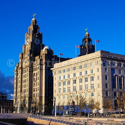 The Royal Liver Building and the Cunard Building against a Brilliant Blue Sky