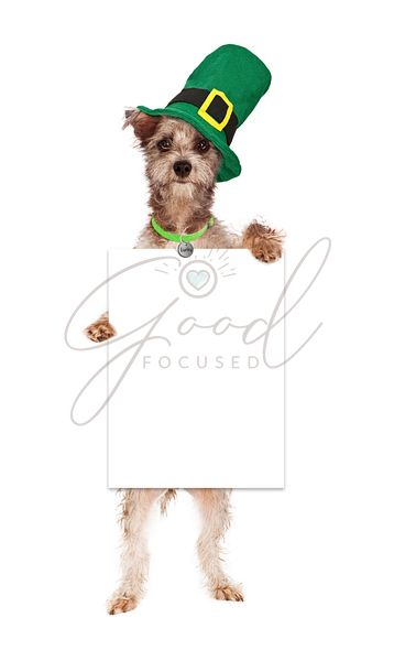 Terrier St Patricks Day Dog Holding Blank Sign