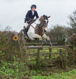 The field jumping near the new Jubilee Covert - Cottesmore Hunt at Deane Bank Farm 4/12/12