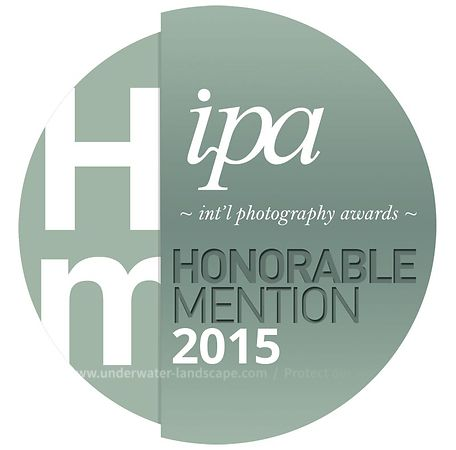 INTERNATIONAL PHOTOGRAPHY AWARDS™ 2015 Honorable mention