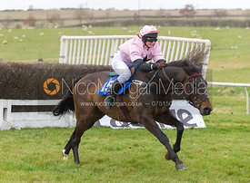 Songe (Miss R. Talbot), The Ladies Open Race - The Quorn at Garthorpe 21st April 2013.