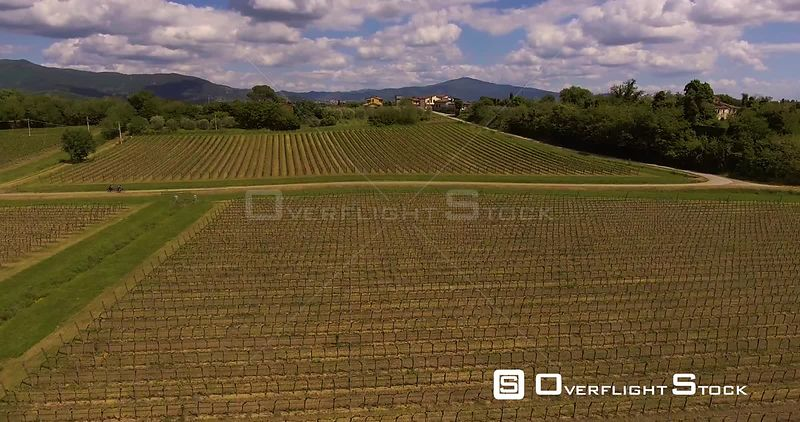 Aerial shot, two cyclists passing with their bicycles by beautiful vineyards in Tuscany, Italy, 4K