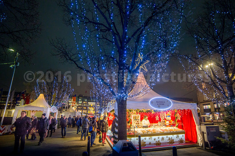 Illuminated Trees are all part of the magic at the White Christmas Market
