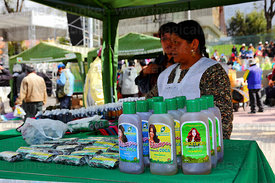 Stall selling shampoo made from coca leaf extract at trade fair promoting alternative products made from coca leaves , La Paz , Bolivia
