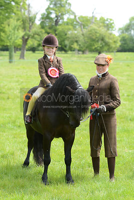Championship 4 - Supreme Mini Pony Championship photos