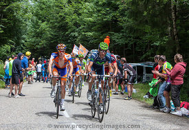 The Peloton - Tour de France 2012