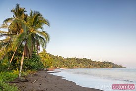 Sunrise on tropical beach with palms, Drake Bay, Costa Rica
