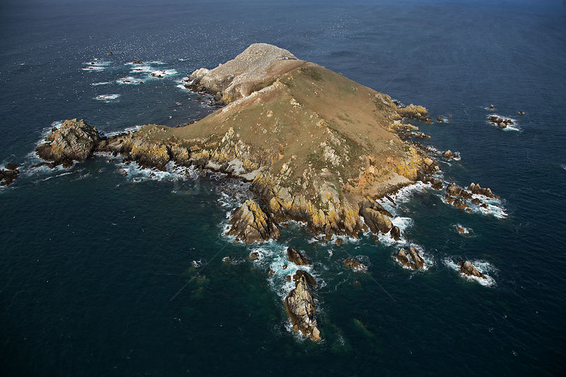 Aerial view of Ile Rouzic / Rouzic Island, the only French colony of Gannets (Morus bassanus). Seven Island Natural Reserve, Cotes d'Armor, Brittany, France, September 2006.