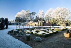 Vew across parterre and lawn to frosted border & trees