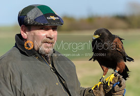 Pete Selby and Buzby the Harris Hawk - The Belvoir at Burton Pedwardine