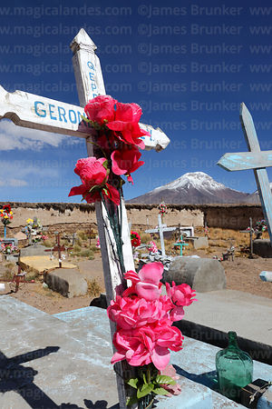 Plastic roses on wooden cross in Caquena cemetery, Pomerape volcano in background, Region XV, Chile