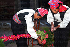 Men decorating wooden arch with kantuta flowers ( Cantua buxifolia ) for San Santiago festival , Taquile Island , Peru