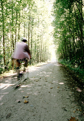 Bicyclist on a Trail in Ohiopyle, Pennsylvania