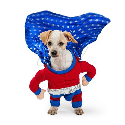 Super Hero Dog With Cape Flying
