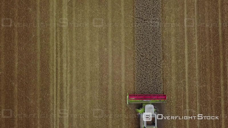 Aerial view of a combine-harvester in a wheat field, filmed by drone, Pommeuse, France