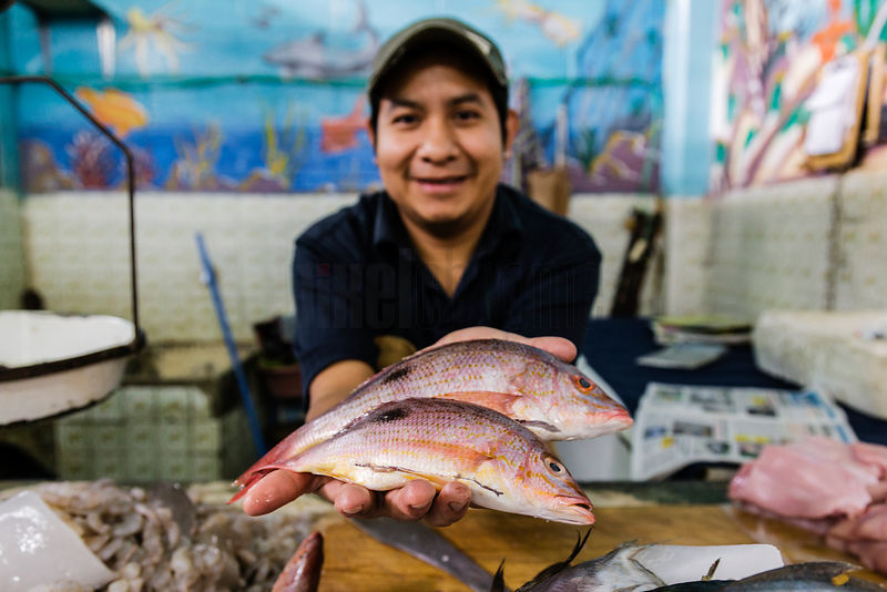 Fish Seller Offering Red Snapper