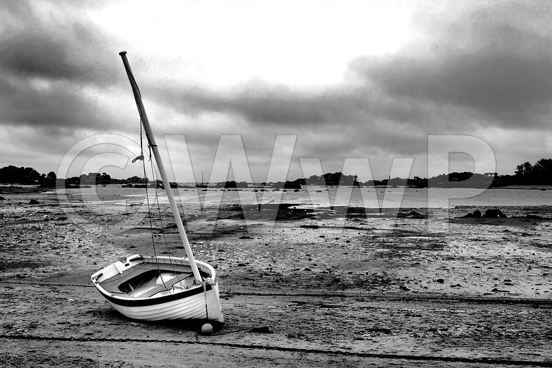 At_low-tide-beach-BW-07-APL
