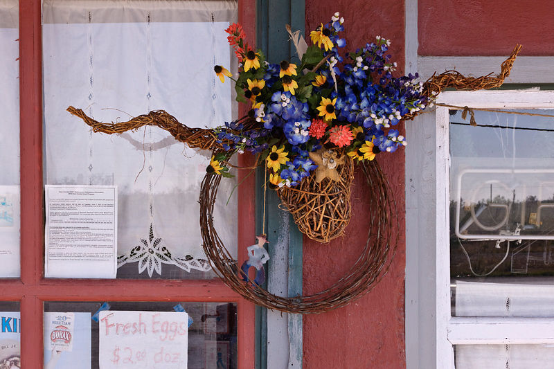 Longhorn Flower Basket Hanging in Store Front