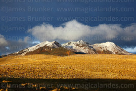 View across altiplano to Mt Chacaltaya and stormy skies, Cordillera Real, Bolivia