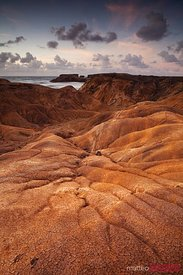 Savane de la Petrification desertic landscape in Martinique Caribbean