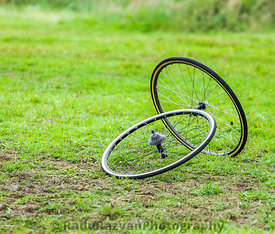 Pair of Cycling Wheels