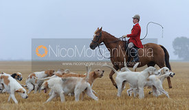 Robert Medcalf - The Cottesmore Hunt at Tongue End 28/8