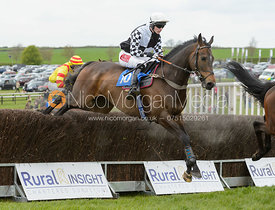 Race 6 - The Quorn Point-to-Point 2017