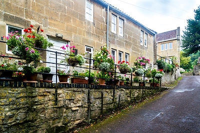 Flowers & House- Monkton Combe, England