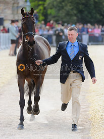Andreas Dibowski and BUTTS LEON - Mitsubishi Motors Badminton Horse Trials 2013