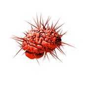 Brain with spikes red