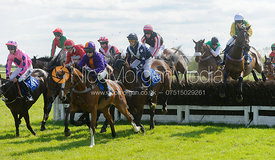 Race 5 racing - Meynell and South Staffs at Garthorpe, 2nd June 2013